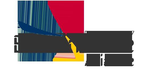 evenimente aviatice 2017 romania