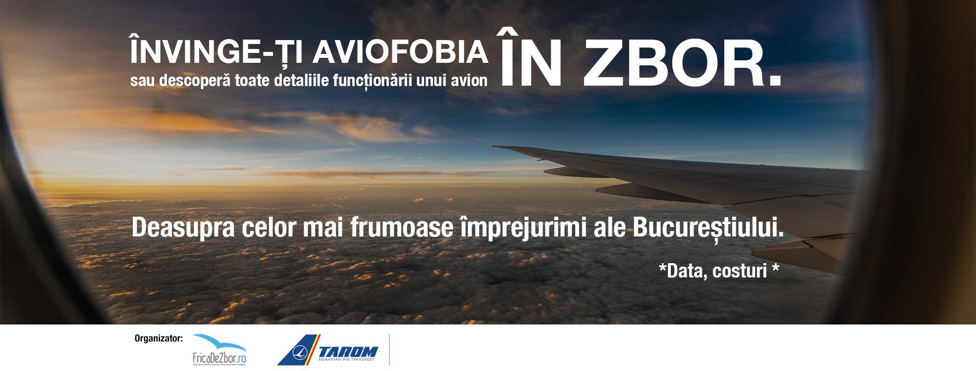 Banner Seminar Frica De Zbor